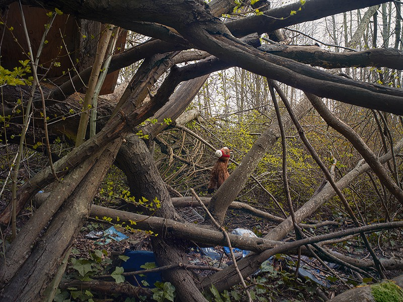 Treehouse, West Duwamish Greenbelt, Seattle March 3, 2017 photograph by Ford Gilbreath © 2017